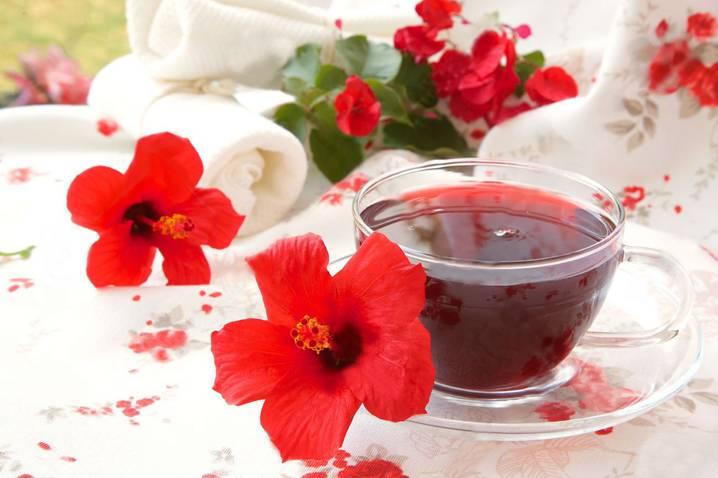чашка с цветком гибискуса