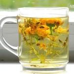 Полезные свойства живых травяных чаев.