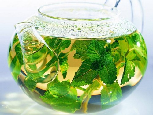 чайник с мятным чаем