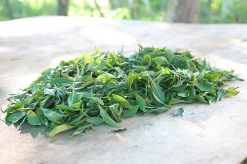 зеленый чай россыпь