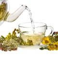 разнообразные травы для заварки чая