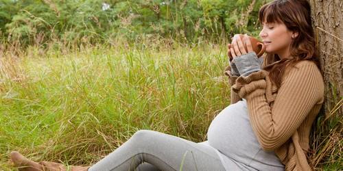 Польза и вред зеленого чая при беременности: обзор актуальных открытий
